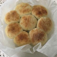 手作りパン/ちぎりパン/キッチン/フード 午後30℃を超えた我が地域 庭仕事のあと…(1枚目)