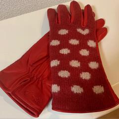 冬物セール/tsumori chisato/ハンドタオル/手袋/フォロー大歓迎 冬物一掃大バーゲン 1枚目は、赤い手袋 …