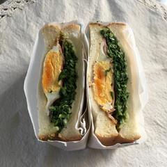 沼さんサンドイッチ/お昼ご飯/フード/グルメ 沼さんサンドイッチ(もどき) なんだか皆…
