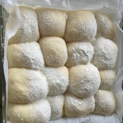 ちぎりパン はちみつミルクちぎりパン 午後夏休みを貰…