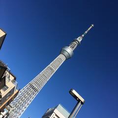 東京/5×20/嵐ライブ 昨夜は 東京ドームで嵐のコンサート  ま…(3枚目)