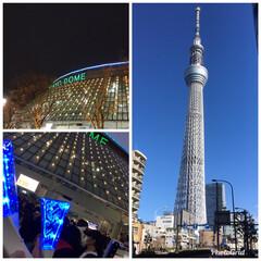 東京/5×20/嵐ライブ 昨夜は 東京ドームで嵐のコンサート  ま…