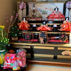 雛人形/ちらし寿司/春巻き/ひなまつりごはん/雛祭り/絵付け蒲鉾/... 我が家のひな祭り 今日は出掛けていたので…(2枚目)