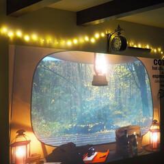 ジュエリーライト フェアリーライト LED イルミネーション 室内 電池式 50球 5m クリスマス(イルミネーションライト)を使ったクチコミ「プロジェクターにそって配置できるフェアリ…」(1枚目)