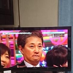 梅雨/衣替え/キッチン雑貨/ペット/ボタニカル/おでかけ