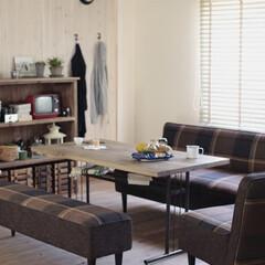 リビング/リビングダイニング/賃貸/賃貸マンション/賃貸住宅/カップル/... ソファとベッドが一体になったソファベッド…