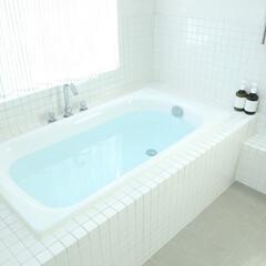 住まい/住宅設備/水回り/浴室・風呂/ユニットバス/内装/...