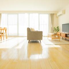 インテリア/家具/収納/模様替え/エースホーム ソファとテーブル、テレビとテーブルのベス…