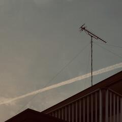 暮らし 夕方の飛行機雲  明日は、天気下り坂  …(3枚目)