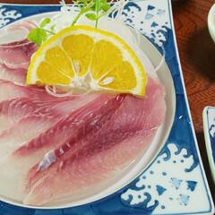 ランチ/鯉料理 鯉料理のお店にて あらい定食をいただきま…(1枚目)