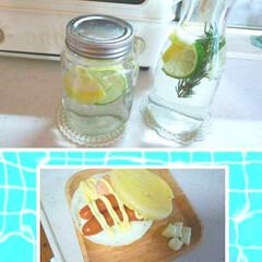 朝ごはん/フード ライム レモン ローズマリー 炭酸水のデ…