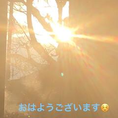 朝ご飯/朝焼け/にこ/黒猫/くろママ/猫/... おはようございます😃 今日は朝焼けが見え…