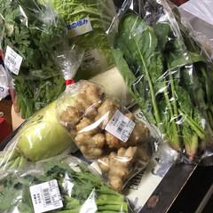 健康/おでかけ/節約 一息ついて買ってきたお野菜とかをお片付け…