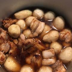 晩ご飯/リミアの冬暮らし/暮らし/節約/リミアな暮らし 鶏肉と里芋の揚げ煮と豚肉と野菜の生姜焼き…