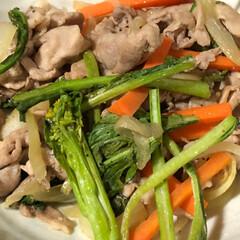 晩ご飯/節約 今日は豚肉と人参玉葱アスパラ菜の炒め物。…(1枚目)