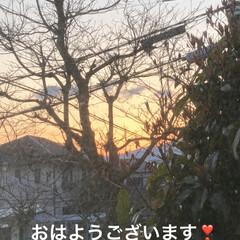 朝ご飯/猫/めん/黒猫/くろママ/にこ/... おはようございます😊 良いお天気です。日…