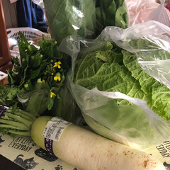おでかけ/暮らし/節約 お野菜をたっぷり買いました。前に買った分…(1枚目)