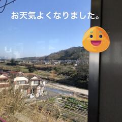 風景/通院/おでかけ 通院日、晴れて良かった。朝は寒くて身体の…(1枚目)