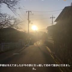 ストーブ独占/黒猫/にこ/くろママ/めん/猫/... おはようございます☀ 早朝寒さが残りまし…