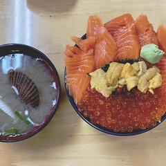 朝ご飯/小樽旅行/三角市場 今日の朝ご飯は、小樽駅の市場で朝から贅沢…