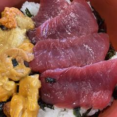 海鮮/ウニ/ランチ 小樽、余市に小旅行。柿崎商店でウニ丼とマ…(2枚目)