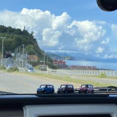 海鮮/ウニ/ランチ 小樽、余市に小旅行。柿崎商店でウニ丼とマ…(3枚目)