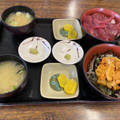 海鮮/ウニ/ランチ 小樽、余市に小旅行。柿崎商店でウニ丼とマ…