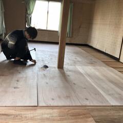 セルフリノベーション/リノベーション/中古物件/床張り替え/和室から洋室/和室リノベーション/... 下地の上に床になるコンパネを敷き詰めて釘…