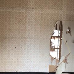 和室/和室改造/砂壁/セルフリノベーション/中古物件/リノベーション/... 反対側の部屋からも壁を壊します。 合わせ…(1枚目)
