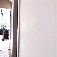 リノベーション/中古物件/漆喰/玄関/セルフリノベーション/DIY/... めちゃくちゃ滑らかに仕上がりました! は…