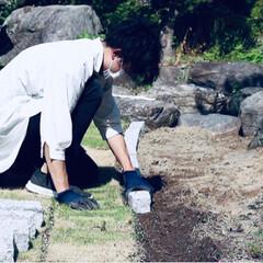 リノベーション/庭/ガーデニング/日本庭園/DIY/ハンドメイド/... 庭作り。 荒れ果てたお庭をDIY。 田舎…(3枚目)