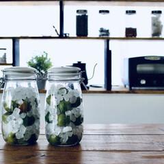 梅シロップ/リノベーション/ダイソー/セリア/100均/DIY/... 梅シロップをDIY 庭になっている梅を使…