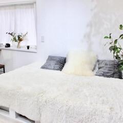 リビング/パレットDIY/パレット/ソファーベッド/小上がり/ラグ/... 木材でソファーベッド兼小上がりを作りまし…