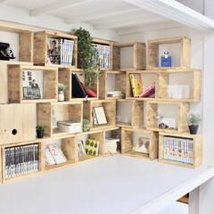 リノベーション/リメイク/押入れ/本棚/収納棚/押入れ収納/... 押入れに本棚をDIYしました。 作業風景…