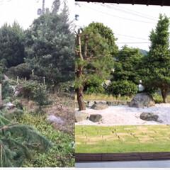 リノベーション/庭/ガーデニング/日本庭園/DIY/ハンドメイド/... 庭作り。 荒れ果てたお庭をDIY。 田舎…