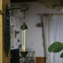 温度計/1×4材/SPF材/雑貨/DIY/キッチン このデザインに一目惚れな温度計♥ 特に気…