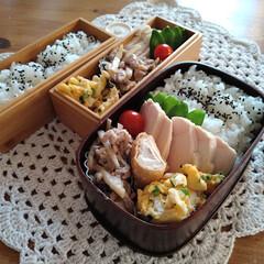 竹のお弁当箱/わっぱ弁当/ランチボックス/お弁当/ランチ/お弁当箱/... 息子と自分とお弁当。 実家で取れた絹さや…(1枚目)