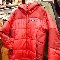 ファッション/アウトドア/キャンプ/タウンユース/登山/トレッキング/... patagonia(パタゴニア)のダスパ…
