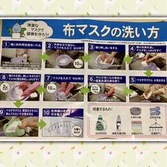 マスクの洗い方/ミシン/マスク おはようございます☀🌅 今日は1月に買っ…(2枚目)