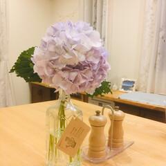 リメイク/空き瓶/花瓶/紫陽花/ボトルリメイク ♡ウィスキーボトルで花瓶♡(1枚目)