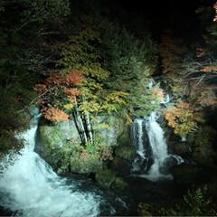 おでかけ/観光/竜頭の滝/栃木 栃木県の竜頭の滝です。ライトアップされる…