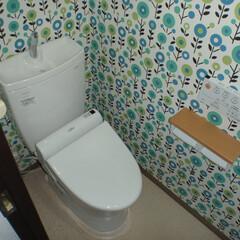 トイレ/トイレリフォーム/ウォシュレット/TOTO/トートー/白/... 東京都葛飾区のトイレリフォーム事例です。…