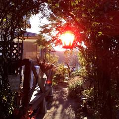 住まい 朝日が ランプの色で綺麗です