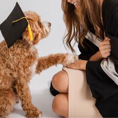 卒業/犬/HERO🐶くん  今年6月に娘が大学を卒業❣️👏🏻( ˊ…(3枚目)