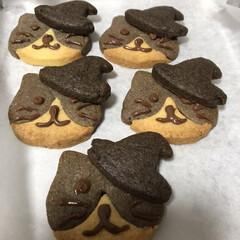 ハロウィン ハロウィン🎃 猫クッキーを作りました。😅