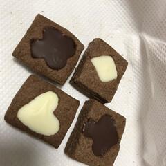バレンタイン/バレンタイン2019 トランプチョコクッキーを作りました。😋