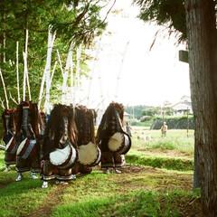 鹿/シカ/秋祭り/秋 シカ踊る豊穣の秋