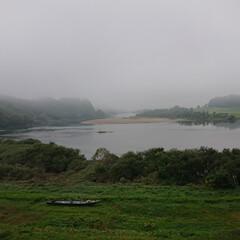 河川敷/太平洋 太平洋まで70km、遠目に白と黒の水鳥を…