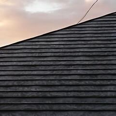屋根/霜/冬/氷点下 霜に覆われた隣家の屋根。 コーヒーをいれ…