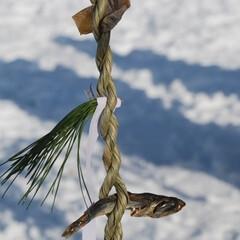 小正月/フード/ハンドメイド/大正月/予祝/擬似儀礼/... 年末年始の覚え書き。  正月7日8日、か…(8枚目)